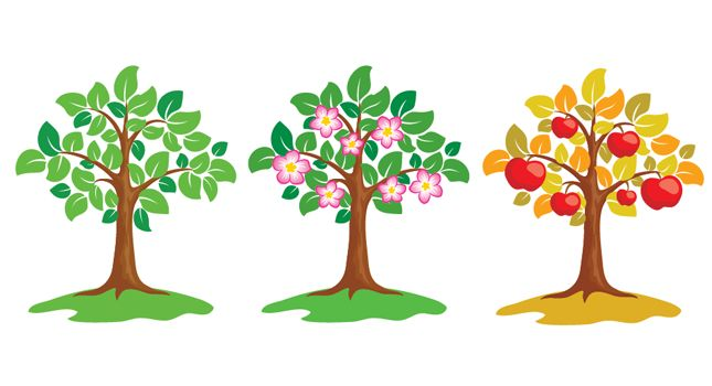 Spring Apple Tree Clipart.