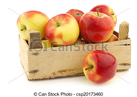 "Stock Image of Dutch apple variety called ""Kanzi""."