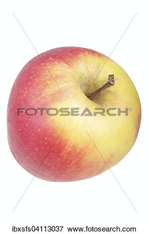 Picture of Apple variety Belgica ibxsfs04113037.