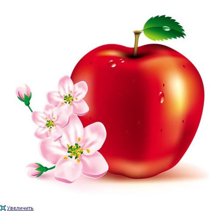 1000+ images about Apple Clip Art on Pinterest.