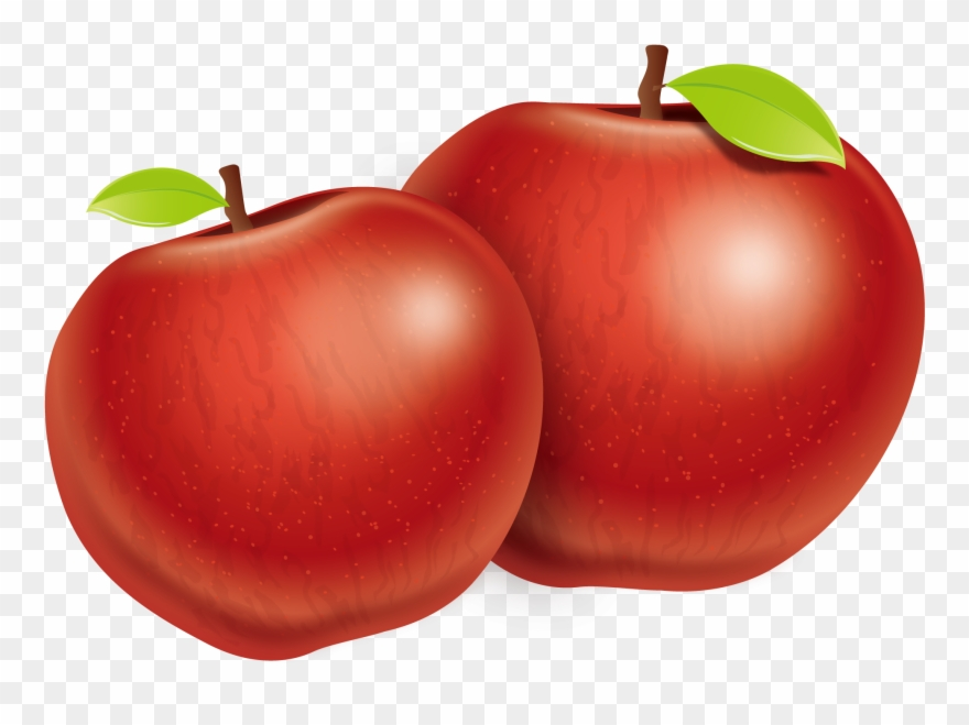 Great Download Tomato Apple Plum Two Fuji Vector Apples.