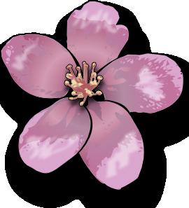 Apple Blossom Clip Art at Clker.com.