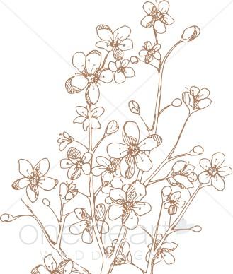 Apple Blossom Clip Art.