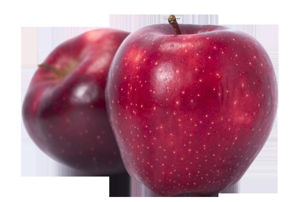 McIntosh Red Delicious Apple.