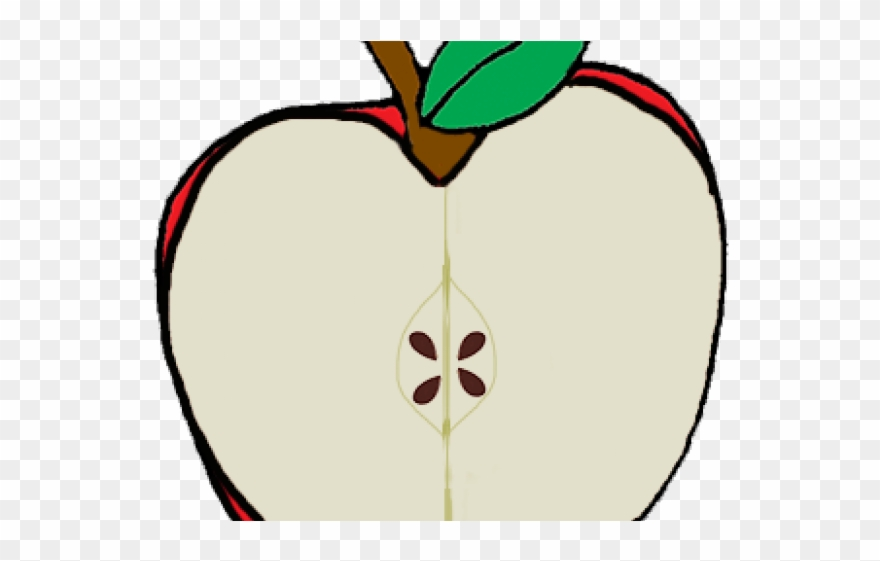 Seed Clipart Apple Seed.
