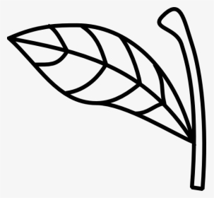 Vector Black And White Download Apple Leaf Clipart.