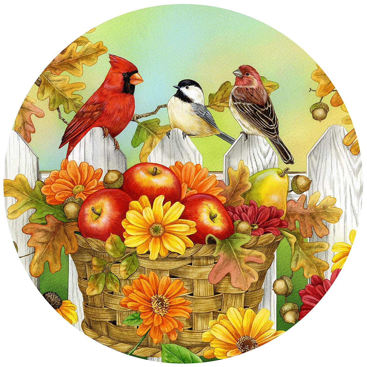 The Jigsaw Puzzle Factory Jane Maday Rounds Apples & Acorns, Harvest Puzzle  Games for Adults and Kids Ages 12 and Up, Made in the USA, 300 Piece, Full.