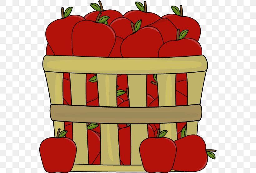 The Basket Of Apples Apple Cider Clip Art, PNG, 568x555px.
