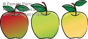 Clip Art Illustration of Different Kinds of Apples.