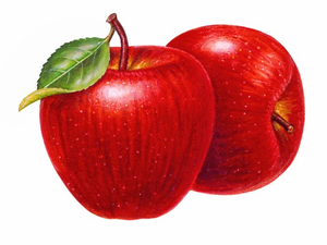 Free Clipart Pictures Of Apples.