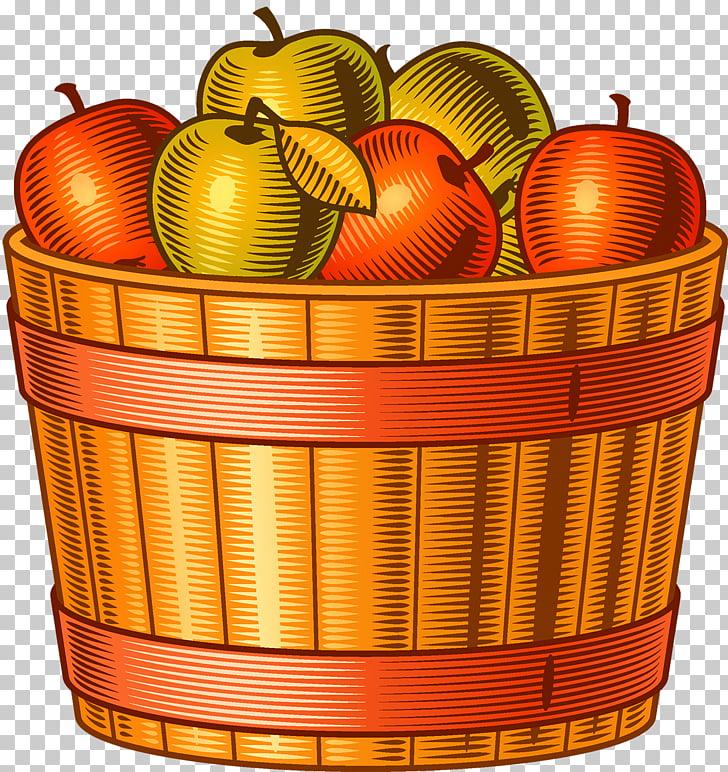 Harvest Autumn Adobe Illustrator, Apple harvest PNG clipart.