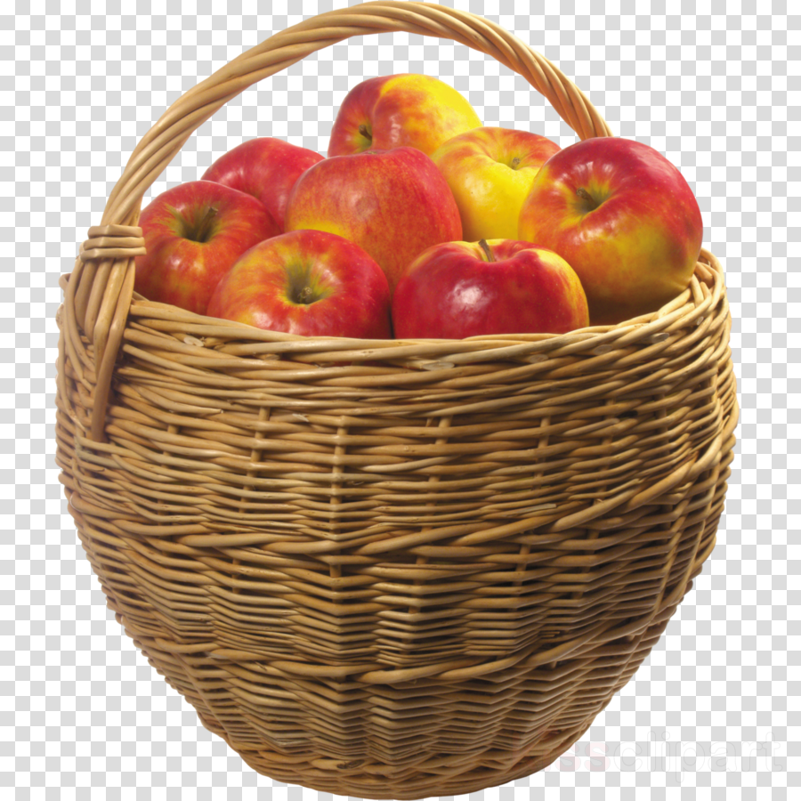 Apples Cartoon clipart.