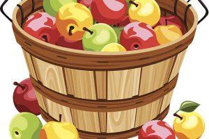 Apple basket clipart 2 » Clipart Station.