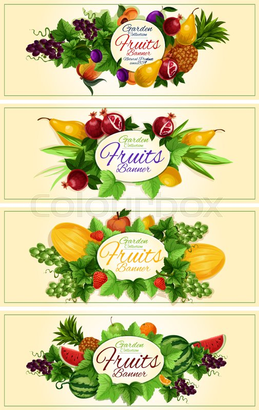 Fruit and berry banner set with apple,.