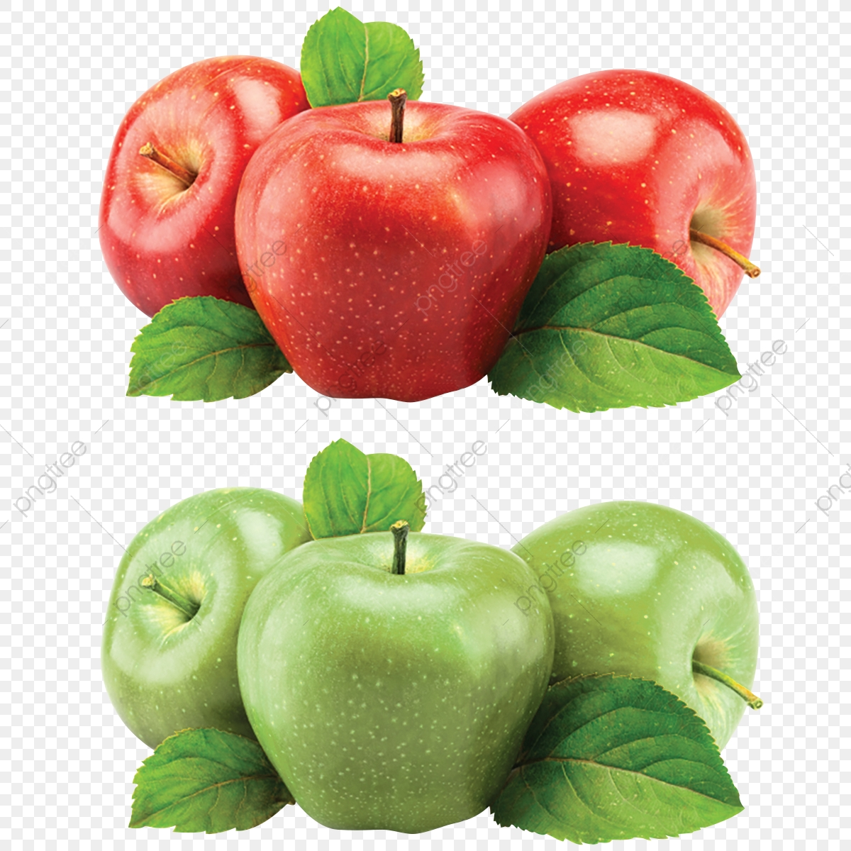 Red And Green Apples Free Psd And Png, Red Apples Png, Green Apples.