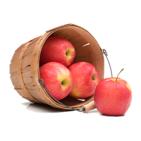 Download Apple Free PNG photo images and clipart.