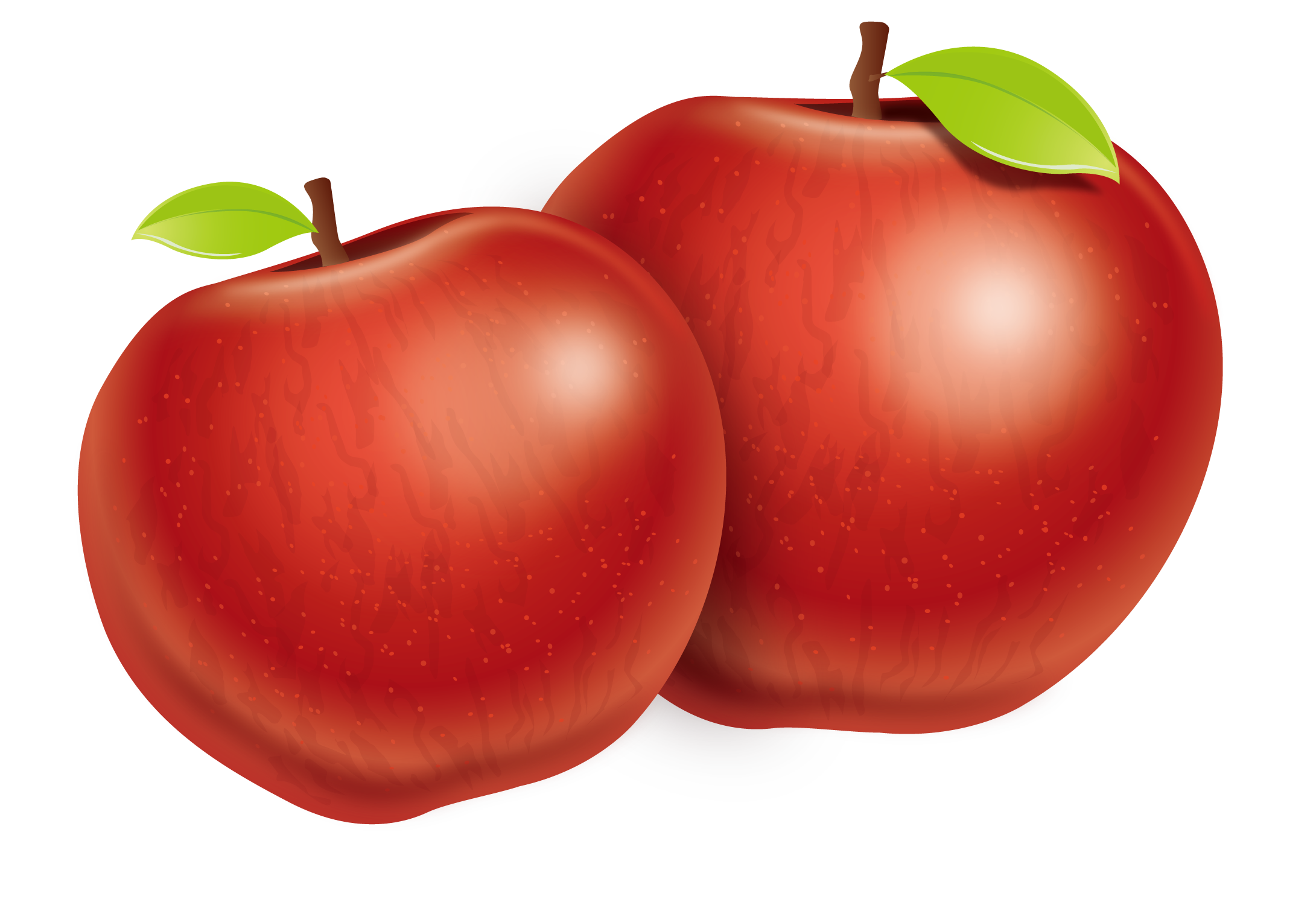 Download Tomato Apple Plum Two Fuji Vector Apples HQ PNG Image.