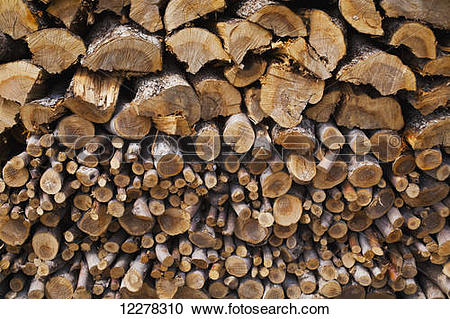 Stock Photography of Pile of apple wood; St. Paul D'abbotsford.