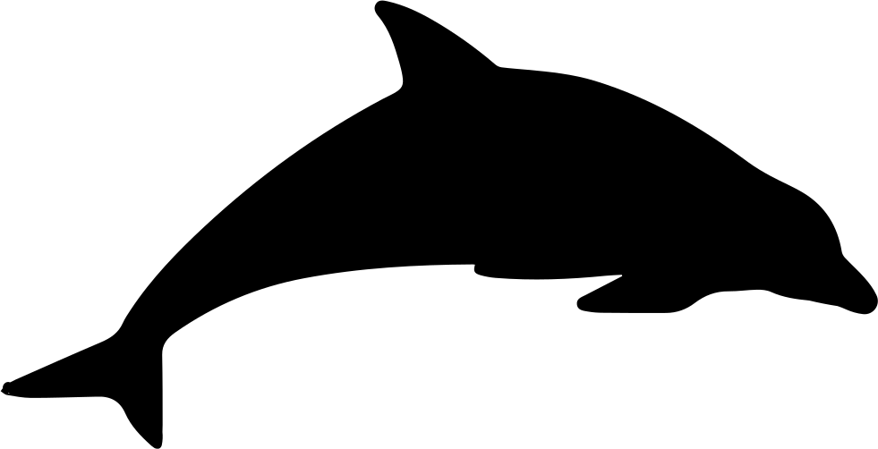 Dolphin Clip art Silhouette Vector graphics stock.xchng.