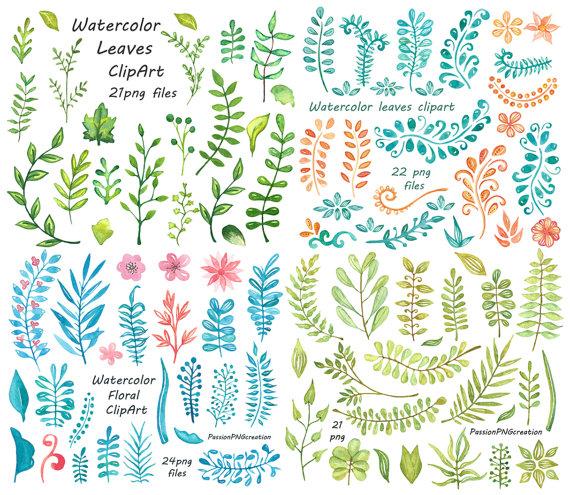 Hand Drawn Herbs Clipart.