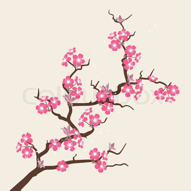 1000+ images about Cassie's Cherry Blossom Tree on Pinterest.