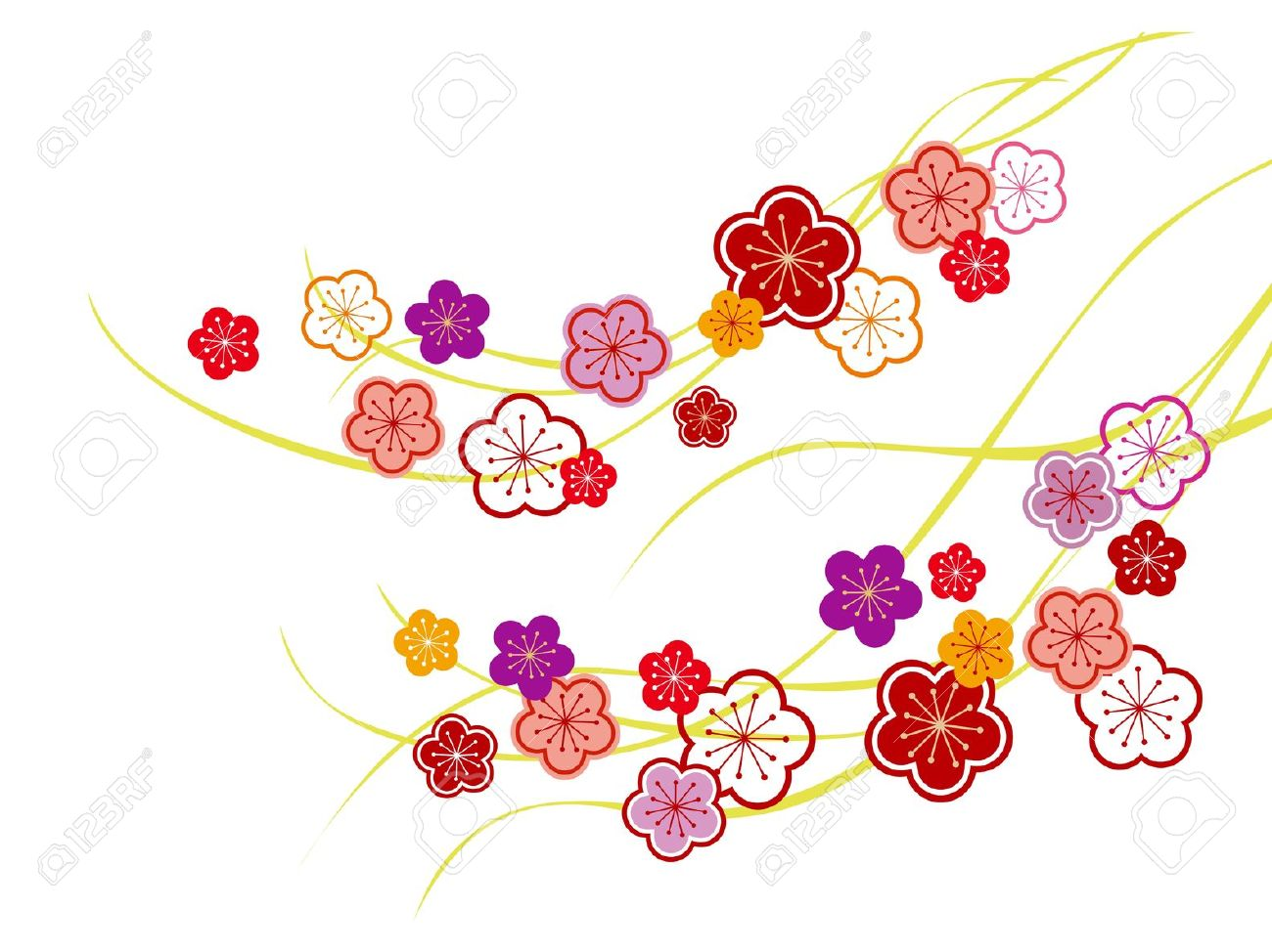 The Illustration Of A Beautiful Japanese Apricot Royalty Free.