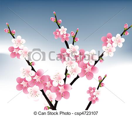 Apricot blossom Illustrations and Stock Art. 189 Apricot blossom.