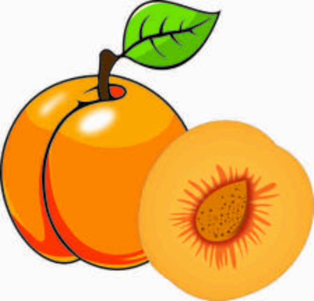 Apricot Clipart & Look At Apricot HQ Clip Art Images.