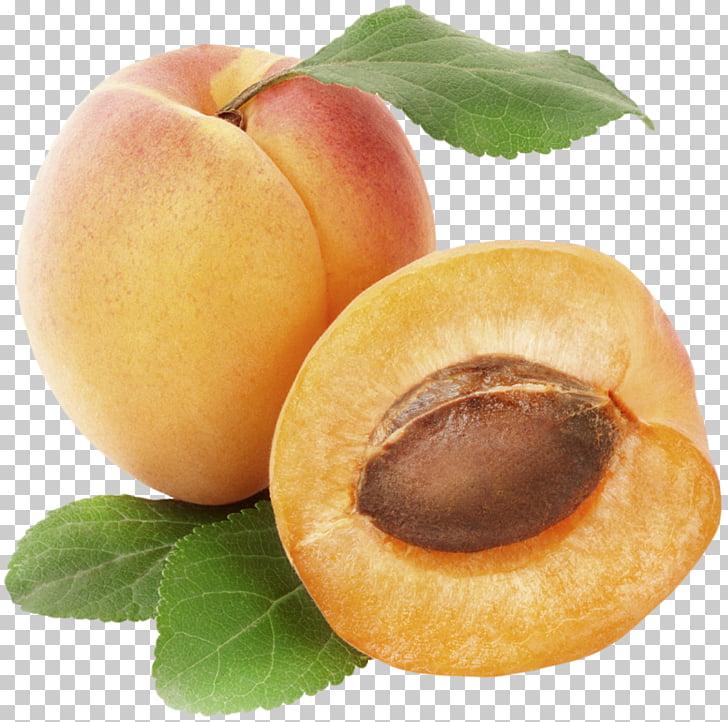 Apricot Fruit , Apricot PNG clipart.