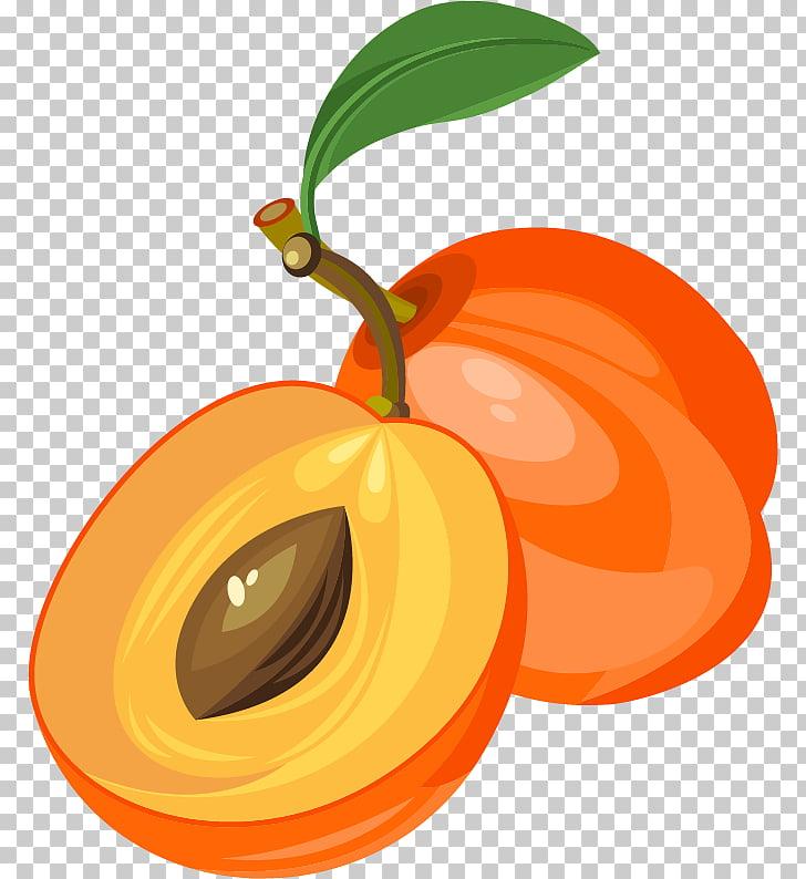 Euclidean Fruit , Apricot fruit material, orange fruits PNG.