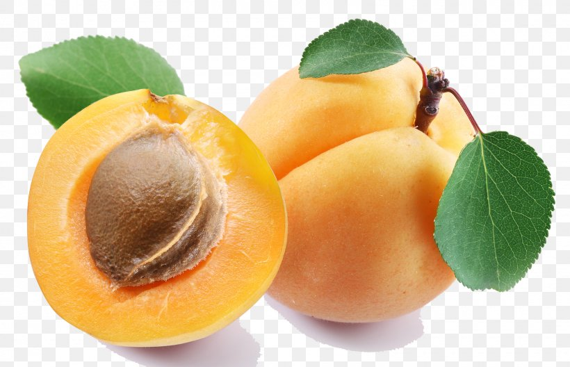 Apricot Oil Strudel Apricot Kernel Fruit, PNG, 1600x1032px.