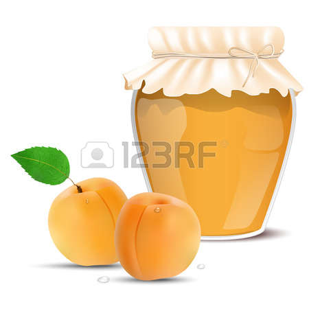 444 Apricot Jam Stock Vector Illustration And Royalty Free Apricot.