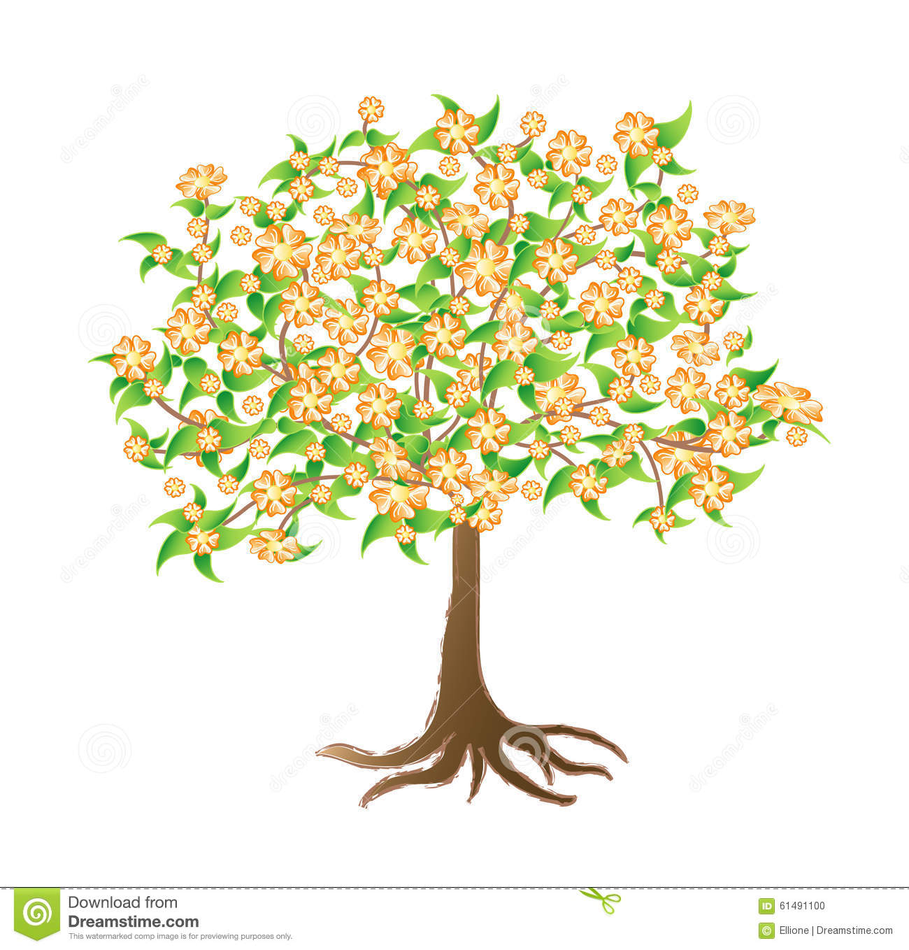 Flowering Apricot Tree Stock Vector.