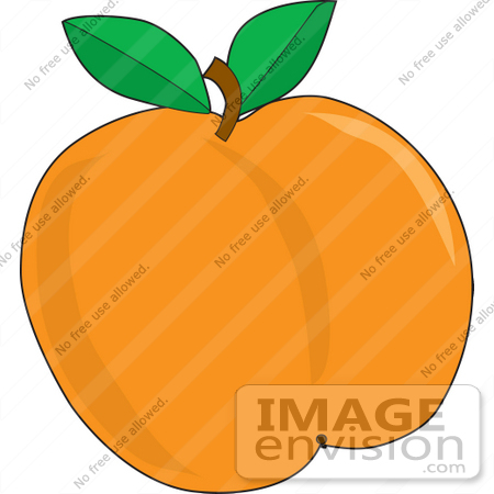 Clipart of a Ripe And Plump Orange Apricot Fruit With Two Leaves.