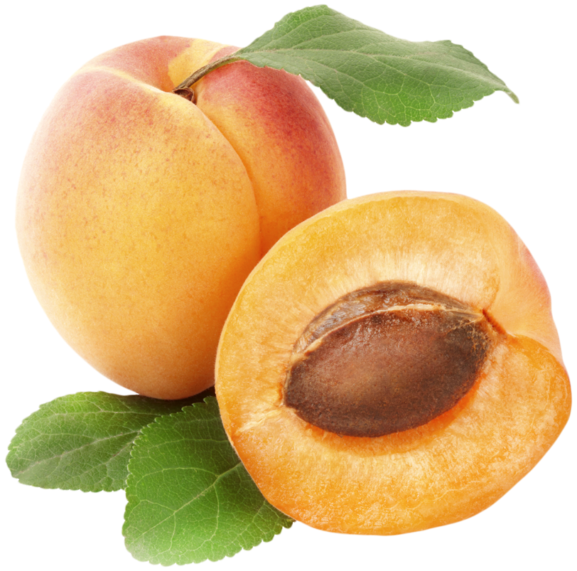 Apricots PNG Clipart.