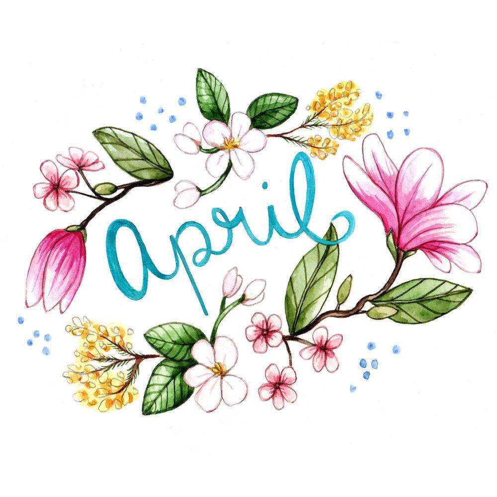 "brookeweeberillustration: ""April Flowers. ""."