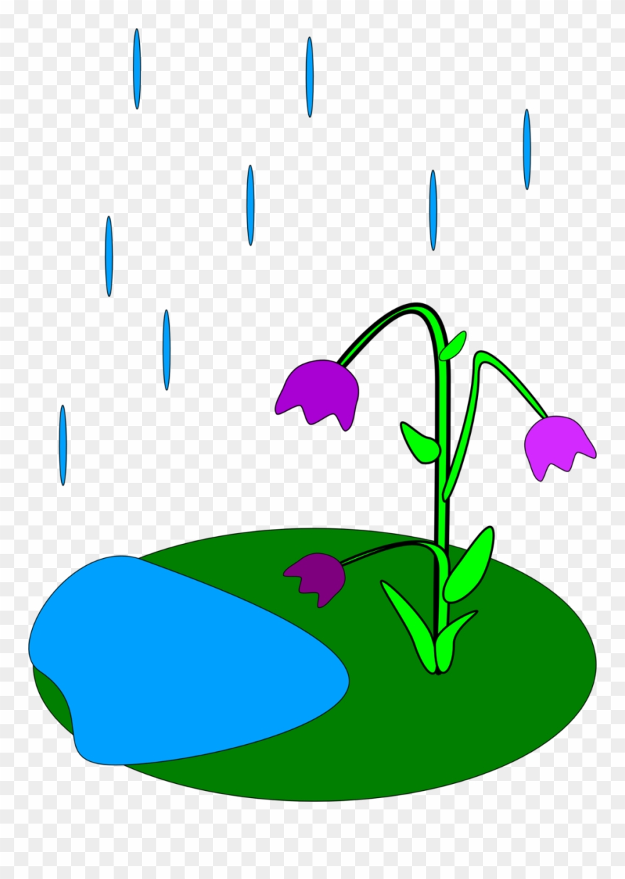 April Showers Bring May Flowers Clip Art.