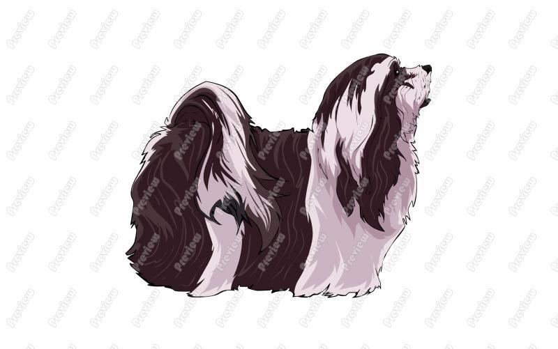Realistic Lhasa Apso Dog Character Clip Art.