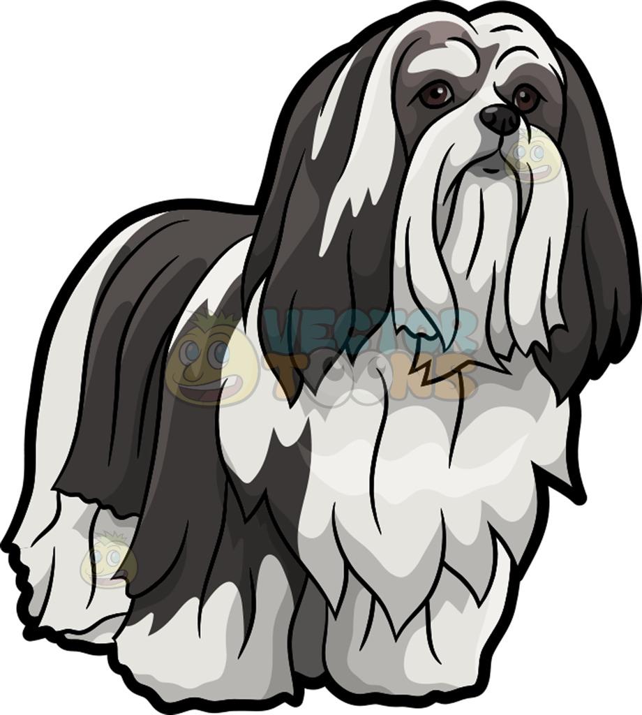 A Lhasa Apso Pet Dog Cartoon Clipart.