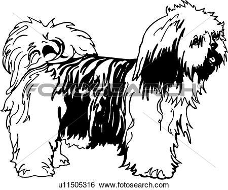 Clip Art of , animal, breeds, canine, dog, llaso apso, show dog.