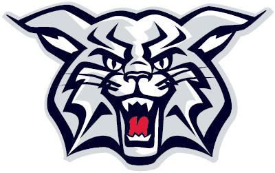 Wildcats Representative Players.