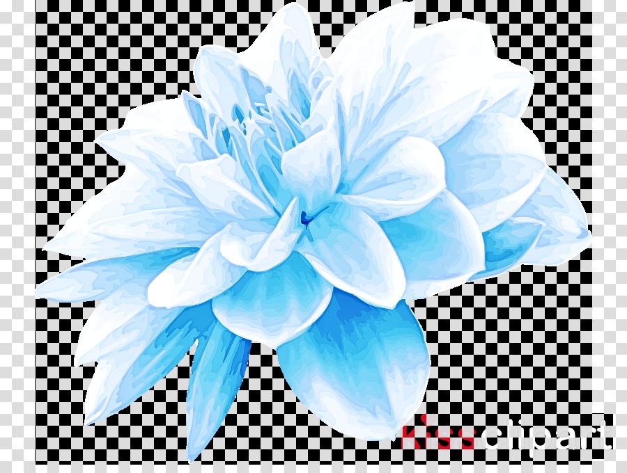 blue petal turquoise aqua flower clipart.