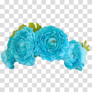 Flower Crown PNG clipart images free download.