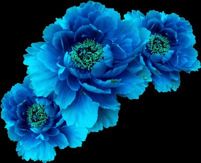 Wreath Aqua Transp Free Blue Flower Crown.
