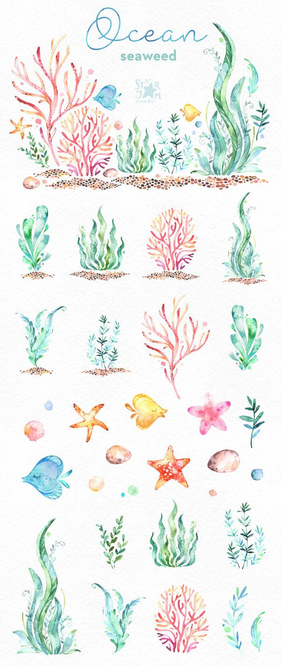 Ocean. Seaweed. Underwater watercolor clip art, water plants.