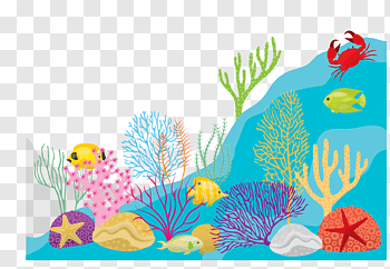 Seaweed cutout PNG & clipart images.