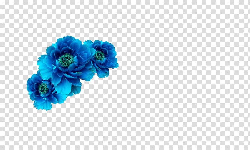 Blue flowers illustration, Blue Flower Crown Wreath Aqua.