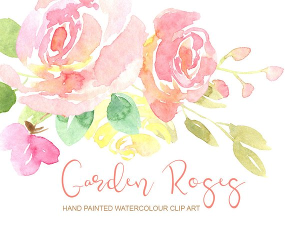 Gentle watercolor roses flowers clipart / watercolour pink.