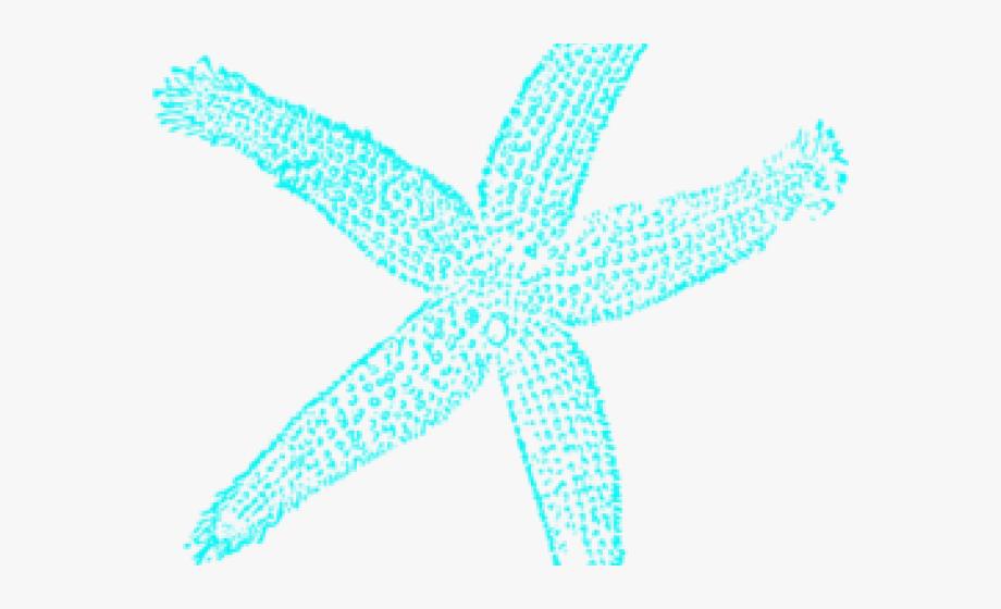 Starfish Clipart Aqua.