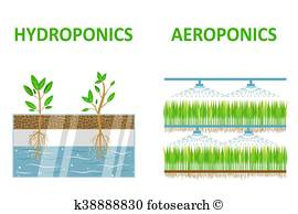 Aquaponics Clip Art Vectors.